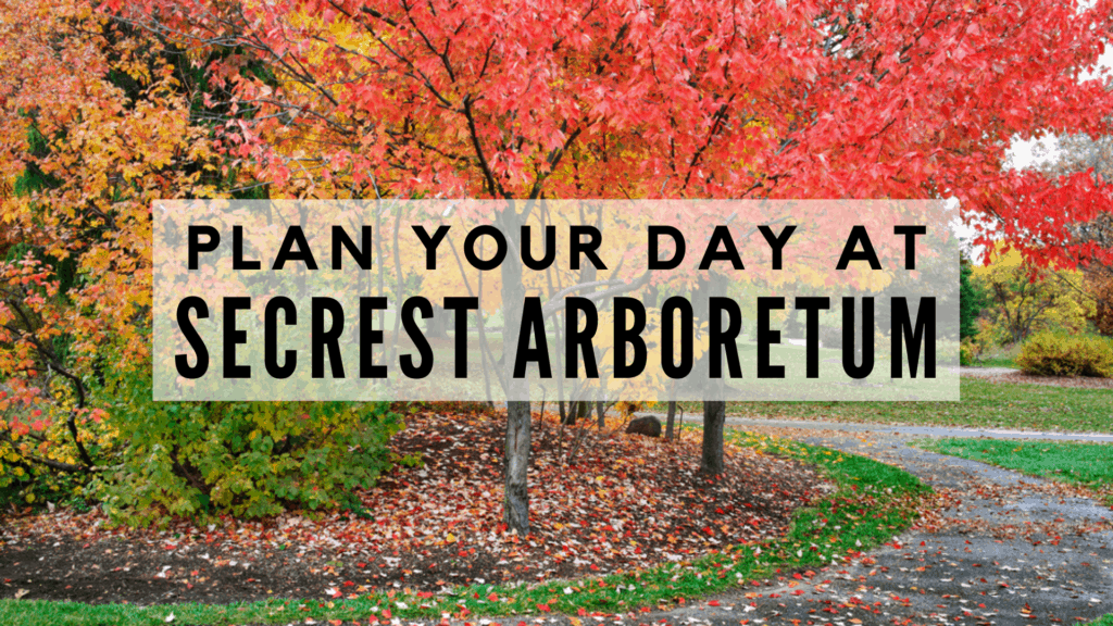 Plan Your Day at Secrest Arboretum