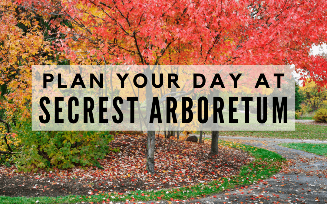 PLAN Your Day at Secrest Arboretum | (2020) TOP Tips