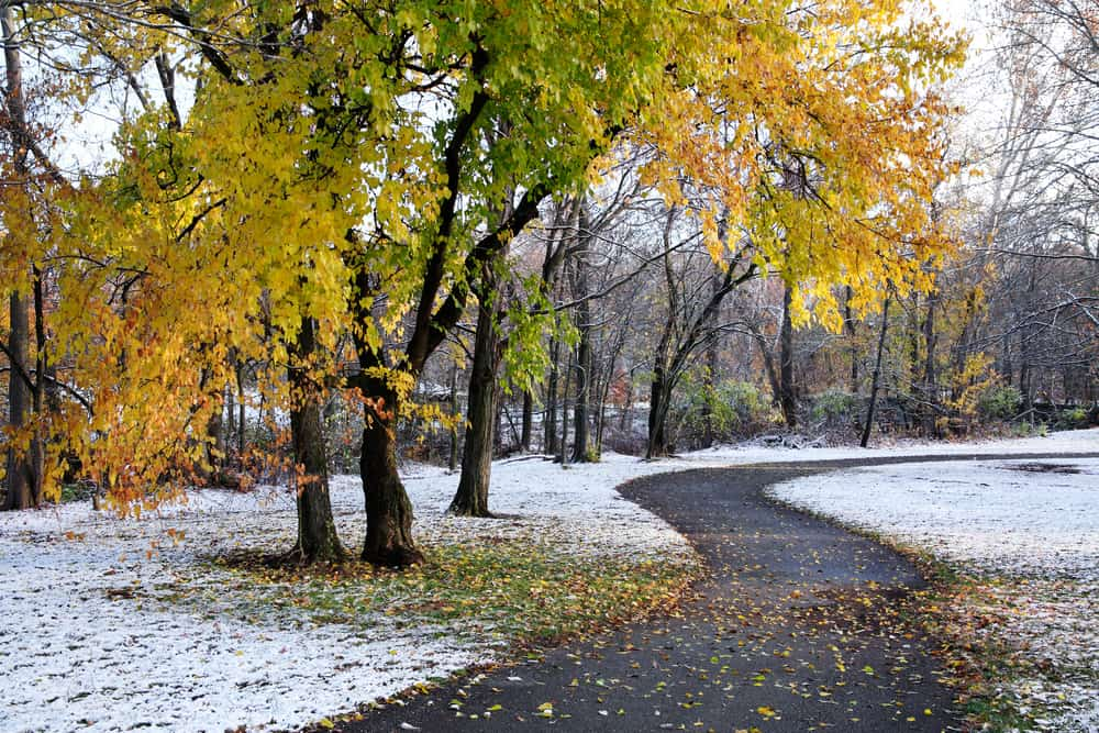 Fall turning into winter in Bath Township