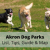 Akron Dog Parks (2020) | List, Tips, Guide & Map
